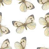 Modelo inconsútil del vector Mariposa de la acuarela Imagen de archivo
