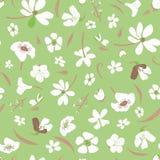 Modelo inconsútil del vector del prado con las flores blancas dispersadas en fondo verde libre illustration