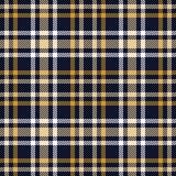 Modelo inconsútil del vector del tartán Textura a cuadros de la tela escocesa Fondo cuadrado geométrico para la tela Foto de archivo libre de regalías