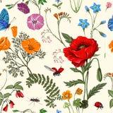 Modelo inconsútil del vector del verano Papel pintado botánico Plantas, insectos, flores en estilo del vintage Mariposas, escarab stock de ilustración