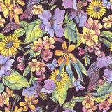 Modelo inconsútil del verano colorido floral de la acuarela, wildflowers libre illustration