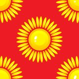 Modelo inconsútil del verano con el sol en fondo rojo Fotografía de archivo libre de regalías