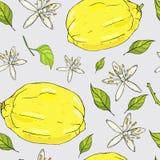 Modelo inconsútil del verano con los limones y las flores fotos de archivo