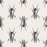 Modelo inconsútil del vintage de los escarabajos Foto de archivo libre de regalías