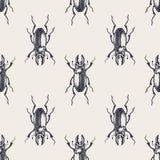 Modelo inconsútil del vintage del escarabajo Fotos de archivo