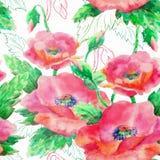 Modelo inconsútil del Watercolour con las flores de la amapola Foto de archivo