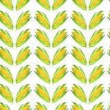 Modelo inconsútil del watercolour del maíz natural fotos de archivo