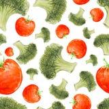 Modelo inconsútil dibujado mano de la acuarela con bróculi y tomates Imagen de archivo libre de regalías