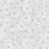 Modelo inconsútil dibujado mano de las rosas blancas del vector Modelo 08 Fotografía de archivo