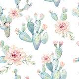 Modelo inconsútil dibujado mano de los cactus del saguaro de la acuarela Fotografía de archivo libre de regalías