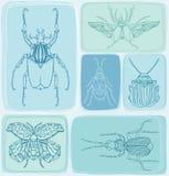 Modelo inconsútil dibujado mano de los escarabajos Puede ser utilizado para la postal, t ilustración del vector