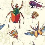 Modelo inconsútil dibujado mano de los escarabajos Puede ser utilizado para la postal, t libre illustration