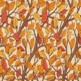Modelo inconsútil dibujado mano del ornamento floral con las hojas de otoño a ilustración del vector