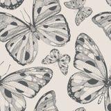 Modelo inconsútil dibujado mano del vector con las mariposas Foto de archivo libre de regalías
