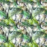 Modelo inconsútil exótico de la acuarela Elefantes con las hojas tropicales coloridas Fondo africano de los animales Arte de la f stock de ilustración