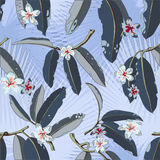 Modelo inconsútil exótico floral tropical del vector Fotografía de archivo libre de regalías