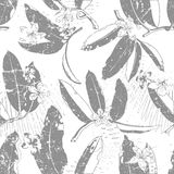 Modelo inconsútil exótico floral tropical del vector Foto de archivo libre de regalías