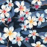 Modelo inconsútil exótico floral tropical del vector Imagenes de archivo