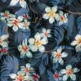 Modelo inconsútil exótico floral tropical del vector Foto de archivo