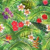 Modelo inconsútil exótico tropical libre illustration