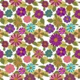 Modelo inconsútil floral Fotografía de archivo libre de regalías