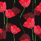 Modelo inconsútil floral Imagen de archivo libre de regalías