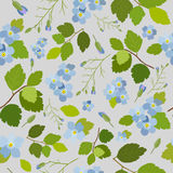 Modelo inconsútil floral brillante hermoso elegante de la primavera Imagenes de archivo