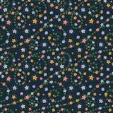 Modelo inconsútil floral con las flores multicoloras Imagenes de archivo