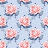 Modelo inconsútil floral con las rosas hermosas 6 Foto de archivo