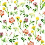 Modelo inconsútil floral de la acuarela Imagenes de archivo