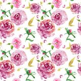 Modelo inconsútil floral de la acuarela con las rosas de Borgoña con las hojas del oro y los brotes color de rosa rosados ilustración del vector