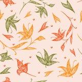 Modelo inconsútil floral del otoño Fotografía de archivo