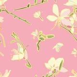 Modelo inconsútil floral del vector del rosa con el lirio stock de ilustración