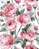 Modelo inconsútil floral del vintage clásico Fotos de archivo