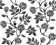 Modelo inconsútil floral del vintage con las rosas dibujadas mano clásica Foto de archivo