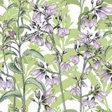 Modelo inconsútil floral Fondo de la flor Ornamento floral de la teja libre illustration