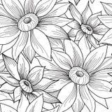 Modelo inconsútil floral Fondo del remolino del girasol de la flor flor Imagen de archivo