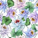 Modelo inconsútil floral hermoso Flores de loto azules y púrpuras grandes con las hojas en el fondo blanco Ilustración drenada ma ilustración del vector