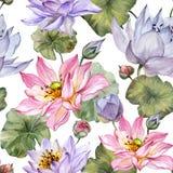 Modelo inconsútil floral hermoso Flores de loto rosadas y púrpuras grandes con las hojas en el fondo blanco Ilustración drenada m Imágenes de archivo libres de regalías