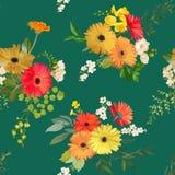 Modelo inconsútil floral Verano y Autumn Flowers Background Imagen de archivo