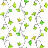 Modelo inconsútil floral verde Imagen de archivo libre de regalías