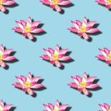 Modelo inconsútil floreciente del nucifera del Nelumbo de las flores de loto sagrado foto de archivo