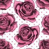 Modelo inconsútil, fondo con las rosas rosadas, aisladas en fondo de los lunares libre illustration