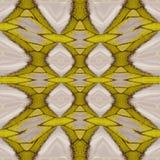 Modelo inconsútil hecho del ala colorida de la mariposa para el backgroun Fotografía de archivo
