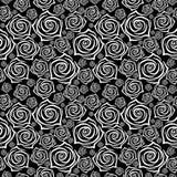 Modelo inconsútil hermoso con las rosas blancas en fondo negro Ilustración del vector Imágenes de archivo libres de regalías