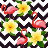 Modelo inconsútil moderno tropical con los flamencos y las flores rosados en geometría ilustración del vector