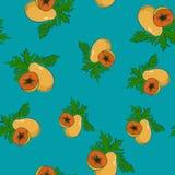 Modelo inconsútil, papaya en Azure Background Fotos de archivo libres de regalías