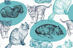 Modelo inconsútil Pequeños gatitos lindos Dibujo hecho a mano de gatos Fotografía de archivo libre de regalías