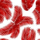 Modelo inconsútil rojo de las hojas de palma ilustración del vector