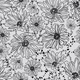 Modelo inconsútil romántico con las flores hermosas de la margarita Foto de archivo